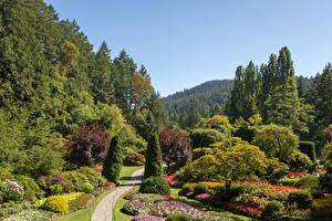 Fotos Kanada Garten Design Strauch Bäume Buchart Gardens Natur