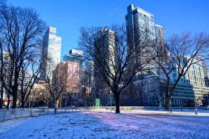 Fotos Kanada Gebäude Winter Toronto Schnee Bäume Städte