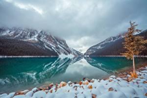 Bilder Kanada See Park Stein Berg Banff Schnee Bäume lake Louise