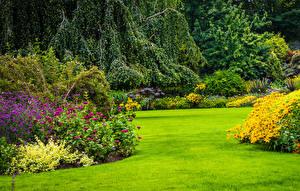 Bilder Kanada Park Vancouver Rasen Strauch Queen Elizabeth Park Natur
