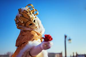 Papéis de parede Carnaval e baile de máscaras Máscara Rosas