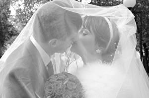 Fotos Paare in der Liebe Mann Hochzeit Kuss Zwei Bräutigam Brautpaar Mädchens