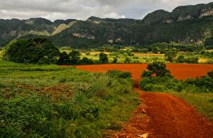 Photo Cuba Mountains Fields Grass Pinar del Rio Nature