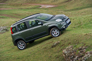 Pictures Fiat Green Metallic  Cars