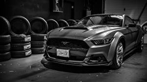 Fotos Ford Schwarzweiss Mustang Widebody