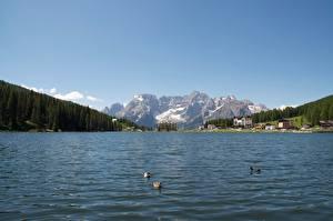 Fonds d'écran Italie Lac Montagnes Photographie de paysage Alpes Neige Lake Misurina