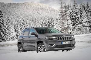 Pictures Jeep Grey Metallic 2018-19 Cherokee Overland Worldwide Cars