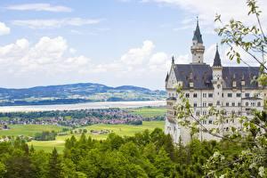 Papéis de parede Neuschwanstein Alemanha Castelo Verão Galho Cidades