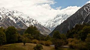 Bilder Neuseeland Gebirge Bäume Schnee Mount Cook National Park Natur