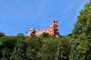Bilder Portugal Burg Park Sintra, Park Sintra-Cascais