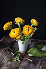 Pictures Ranunculus Wood planks Vase Yellow Flowers