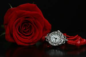 Pictures Roses Clock Red flower