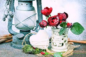 Fotos Rosen Petroleumlampe Vase Schnee Herz Blumen
