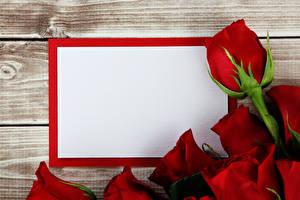 Bilder Rosen Vorlage Grußkarte Rot