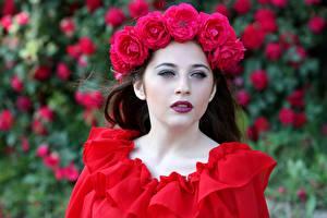 Hintergrundbilder Rosen Kranz Rot Starren Mädchens