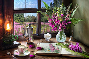 Image Still-life Foxgloves Paraffin lamp Kettle Vase Book Cup Flowers Food
