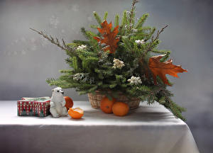 Images Still-life Mandarine Table Branches Food