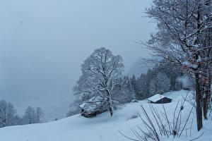 Hintergrundbilder Schweiz Winter Gebäude Schnee Bäume Braunwald Natur
