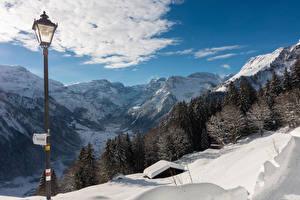 Sfondi desktop Svizzera Inverno Montagne Neve Lampioni Picea Braunwald Natura