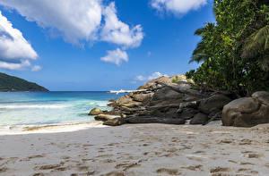 Bilder Tropen Steine Sand Strände Police Beach Seychelles Natur