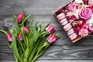 Fotos Tulpen Macaron Blumen Lebensmittel