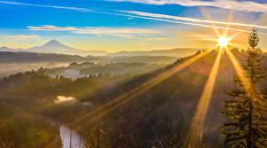 Fotos USA Wälder Sonnenaufgänge und Sonnenuntergänge Lichtstrahl Sandy Oregon Natur