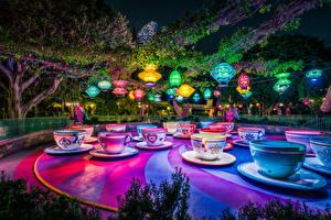 Picture USA Park Disneyland California Anaheim Design Cup Night time Nature