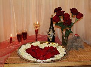 Fotos Valentinstag Rosen Kerzen Wein Katze Petalen Flasche Weinglas Blumen Lebensmittel