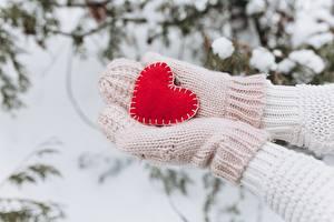 Fotos Valentinstag Schnee Hand Fausthandschuhe Herz