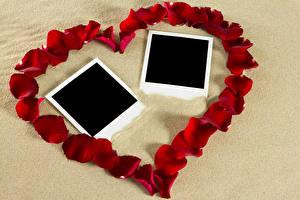 Hintergrundbilder Valentinstag Vorlage Grußkarte Herz Blütenblätter Rot Design Blumen