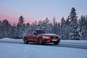 Fotos Volvo Bordeauxrot Metallisch 2018-19 V60 T8 R-Design Worldwide Autos