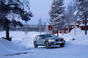 Picture Volvo Winter Metallic 2018-19 V60 T5 Cross Country auto