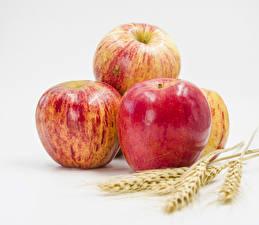 Fotos Äpfel Großansicht Weißer hintergrund Ähre Lebensmittel