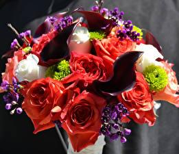 Fotos Sträuße Rosen Calla palustris Blumen