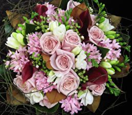 Hintergrundbilder Sträuße Rosen Freesien Hyazinthen Calla palustris Blumen