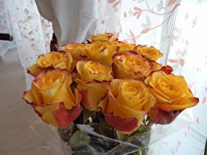 Bilder Blumensträuße Rose Gelb Blüte