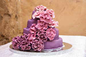 Pictures Torte Design Violet Food
