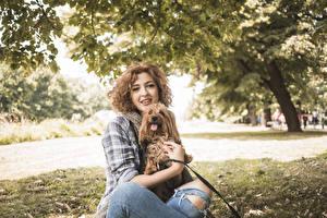 Bilder Hund Braunhaarige Blick Yorkshire Terrier junge frau Tiere