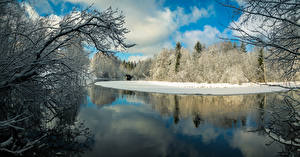 Pictures Finland Winter Rivers Forests Branches Karkkila Nature