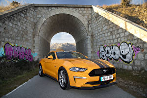 Bilder Ford Gelb Metallisch 2018-19 Mustang GT Fastback Performance Parts