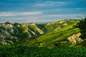 Bilder Italien Grünland Hügel Brisighella