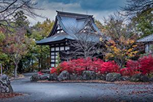 Hintergrundbilder Japan Gebäude Design Strauch Numata