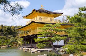 デスクトップの壁紙、、日本、京都市、寺院、トウヒ属、Kinkaku-ji Temple、都市