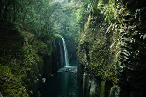 Image Japan Rivers Waterfalls Forests Cliff Moss Takachiho Kyushu Nature