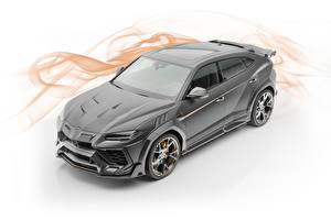Picture Lamborghini White background Grey 2019 Mansory Urus automobile