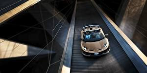 Picture Lamborghini Roadster Aventador SVJ