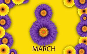 Bilder 8 März Gerbera Englisches