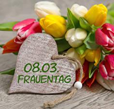 Bilder 8 März Tulpen Herz Deutsch Blumen