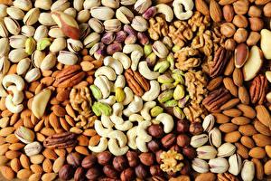 Hintergrundbilder Nussfrüchte Textur Haselnuss Mandeln