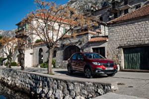 Fotos Renault Bordeauxrot 2018-19 Logan Stepway City Autos